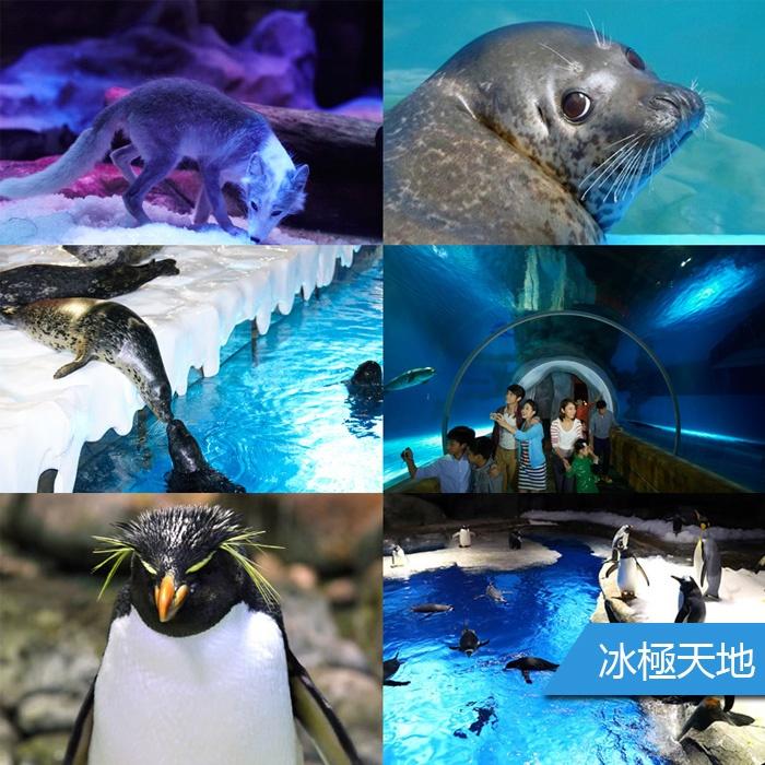 香港海洋公園電子門票價格,香港海洋公園電子換票證,香港海洋公園門票價格,香港海洋公園電子票預訂