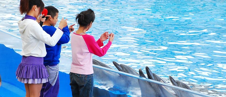 花蓮遠雄海洋公園門票,花蓮海洋公園門票,花蓮海洋公園門票優惠
