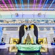 珠海長隆企鵝酒店3天2晚雙人套票(2晚酒店+海洋王國+《龍秀》表演+自助晚餐)