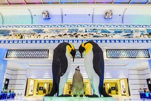 珠海長隆企鵝酒店套票(酒店+海洋王國+晚餐+船票)
