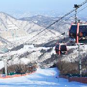 韓國採草莓+鐵道自行車+洪川大明滑雪場觀光一日遊