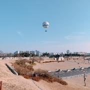 [高空賞櫻]韓國熱氣球體驗+水原傳統市場一日遊