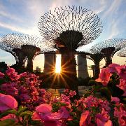 新加坡濱海灣花園雙館+OCBC空中走廊套票