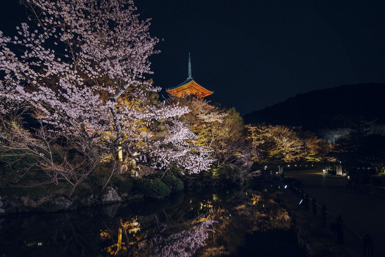 京都清水寺秋季夜間特別參拜時間2019