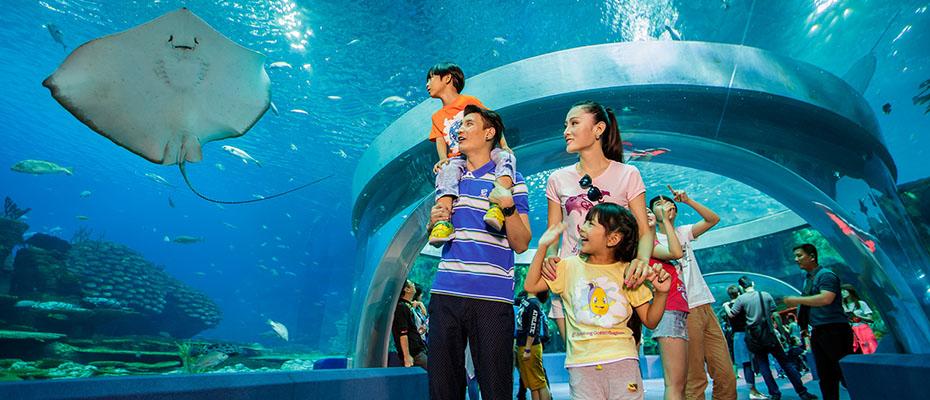 珠海長隆海洋王國門票電子票,珠海長隆樂園,珠海長隆海洋世界,珠海長隆海洋公園