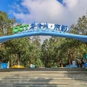 2020深圳對醫護人員免費開放的景區景點